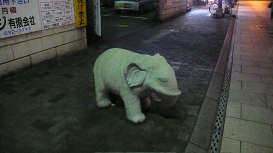 サンサン通り象